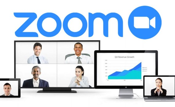 Fake Zoom Domains