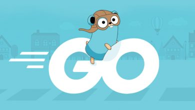 Vulnerability in the Go library