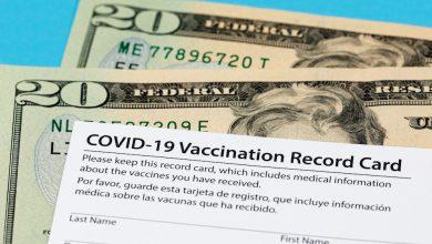 fake vaccination certificates